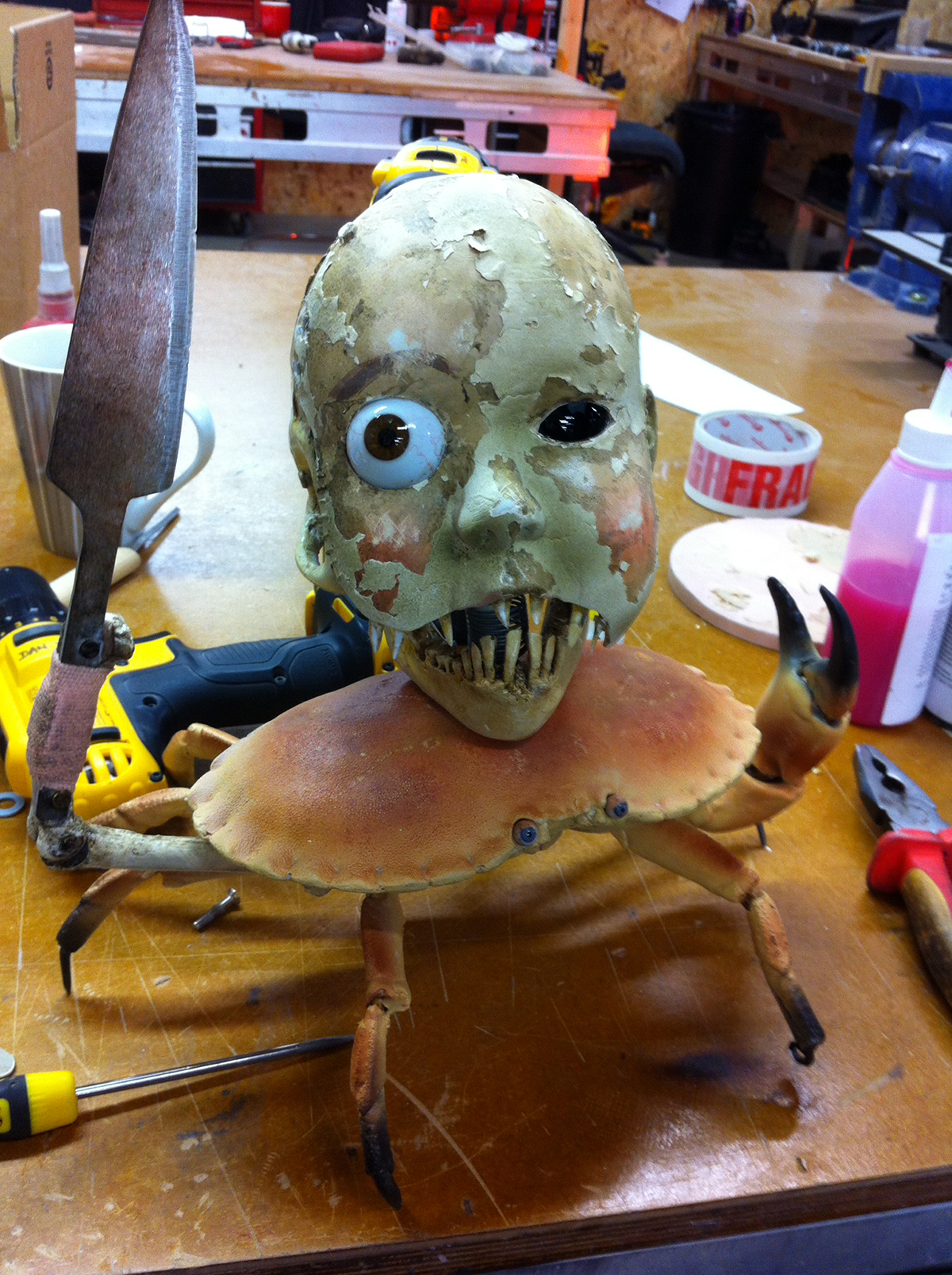 A prop for the movie, Miss Perigrines Home For Peculiar Children. A creepy dolls head on a crabs